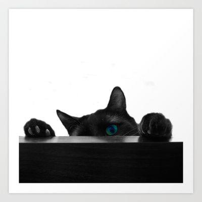 Black Cat Attack Art Print by BadgerBlossom - $17.68