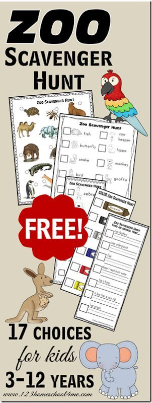 FREE Zoo Scavenger Hunts for kids - over 17 different scavenger hunt sheets for kids from toddler, preschool, kindergarten, first grade, 2nd grade, 3rd grade, 4th grade, 5th grade, and 6th grade kids in both color and black and white, with pictures for non readers and ones for readers. These are great for fieldtrips for science
