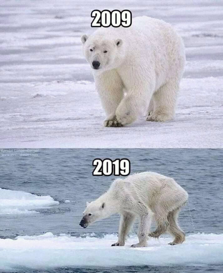 Retodelos10anos 10yearchallengue Reto2009vs2019 2009vs2019 Save Earth Global Warming Save Our Earth