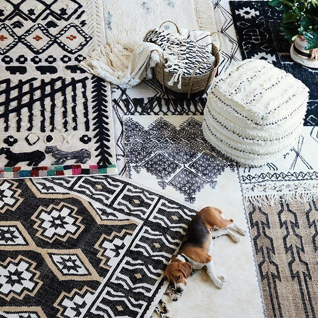 Our spring decor strategy: put a beagle on it. #anthrohome