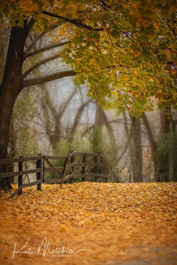 Digital Background Of Fall Country Scene With Images Landscape