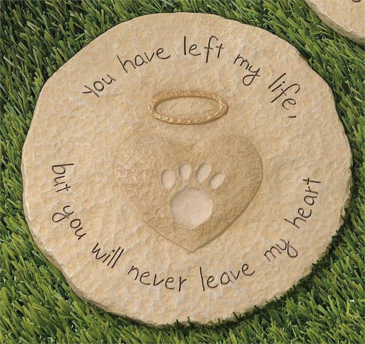 loss of a dog/cat poem | Death of a Pet Remembrance