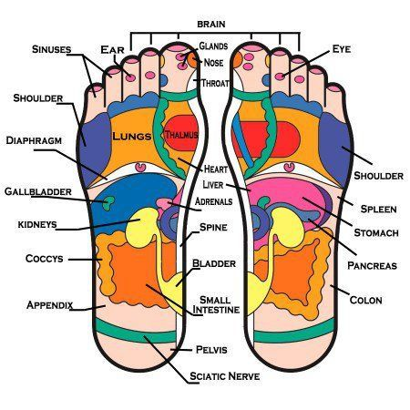 Foot reflexology - Acupressure - As gentle to intense pressure is applied and massaged, the body is thought to experience a 'release' of congested energy in the tender spots – therefore leading to relief of painful conditions and body ailments. The toes represent the head and neck, so when struggling with a headache, simply pinching lightly the sides of the tops of all the toes, looking for the sore spots, can help alleviate headache pain right away. In the webbing between the toes, tender…