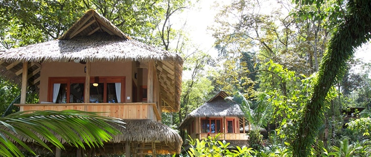 Drake Bay    Copa De Arbol Beach and Rainforest Resort