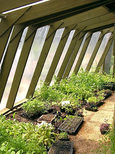 Permaculture Experts Create an Ecosystem in Whitefield