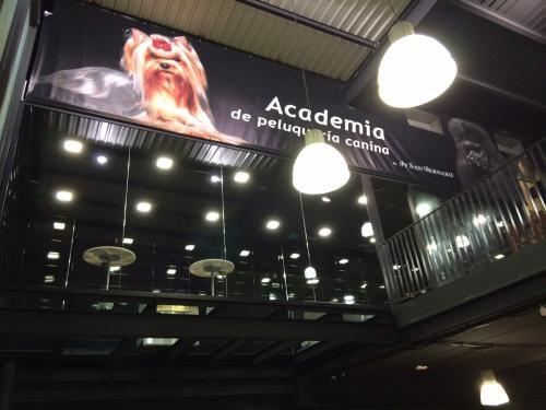 Academia de peluquería canina Maskokotas Valencia Nuestras instalaciones #Academia #Escuela #Peluquería #Canina  #Maskokotas #Formación #IvSanBernard #Valencia