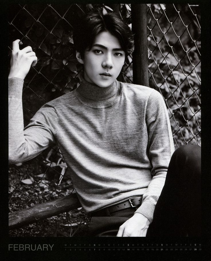 1000+ images about EXO Calender on Pinterest | Seasons, Posts and Suho