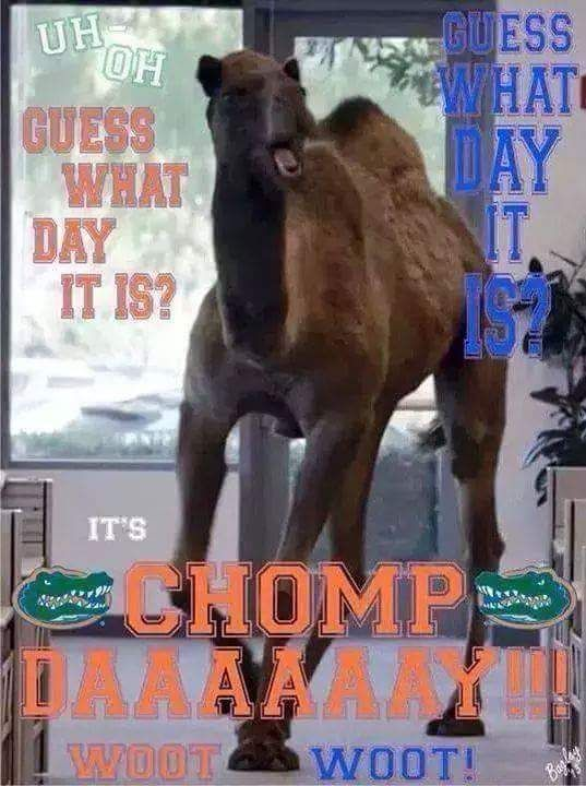 Chomp Daaaaay!!