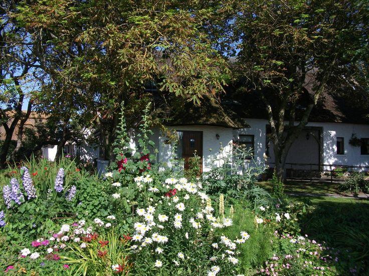 Garden Cottage in summer