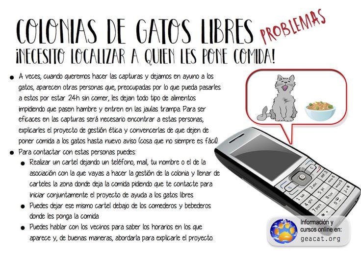 Problema 19: localizar alimentadoras  #CES  #GestiónÉtica  Curso: https://goo.gl/YXAFJC  Pdf: