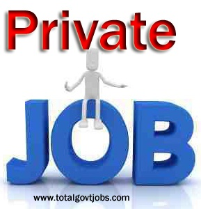 Dear job seekers welcome to ww.totalgovtjobs.com latest private jobs 2013 section