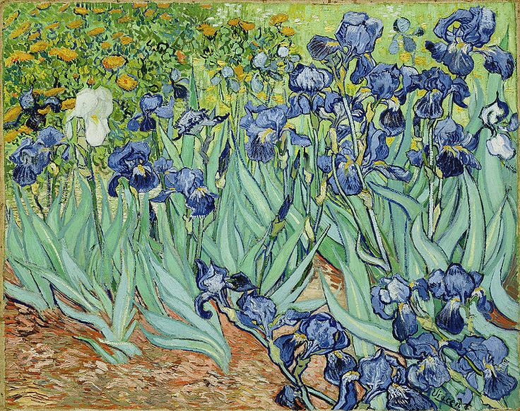 Vincent van Gogh's Irises. This is my work computer's desktop image!