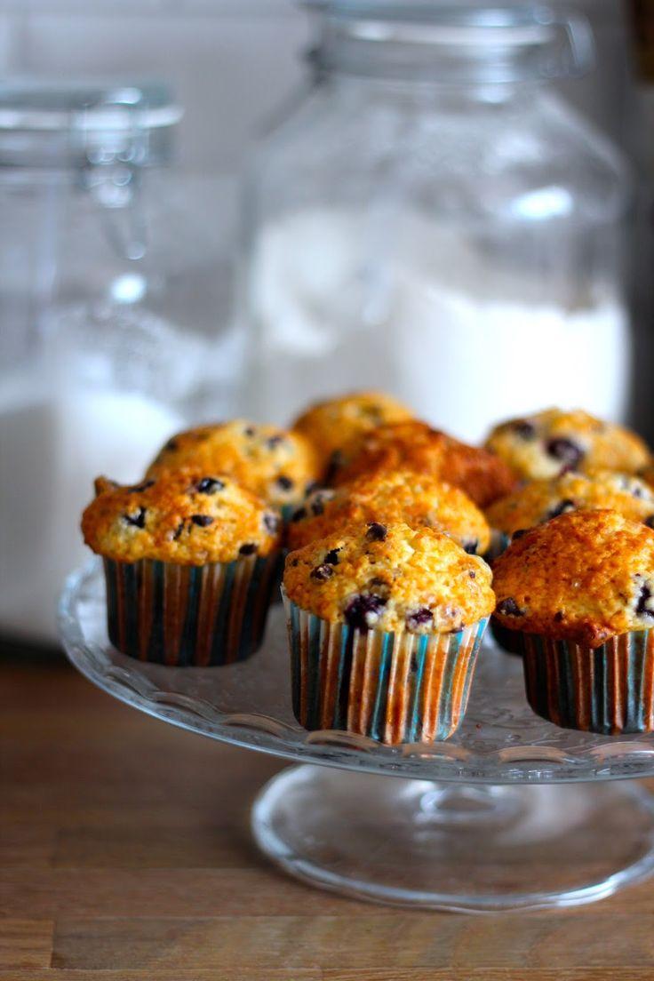 As Minhas Receitas: Muffins de Mirtilos e Pepitas de Chocolate