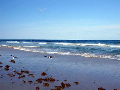 Wilmington, North Carolina              Wrightsville Beach
