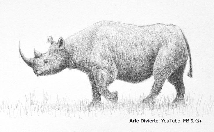 Cómo dibujar un rinoceronte negro - Narrado  #dibuja #arte #ArteDivierte #rinoceronte #animales #WWF #artistleonardo #LeonardoPereznieto #tutorial #Patreon  Haz clíck aquí para ver mi libro: http://www.artistleonardo.com/#!ebooks/cwpc