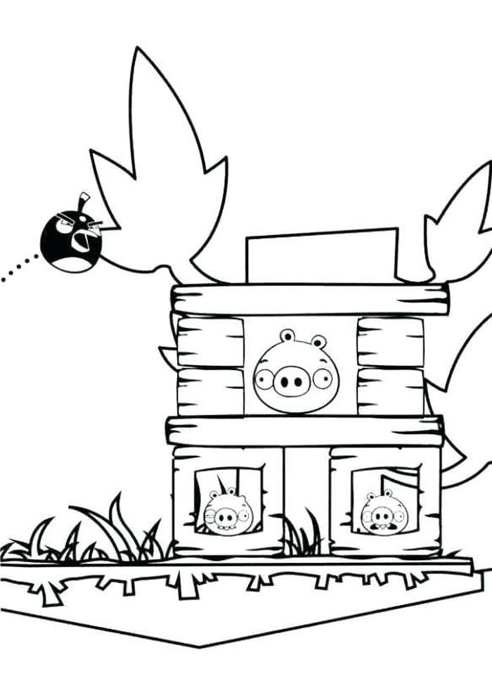Angry Bird Coloring Page In 2020 Coloring Books Bird Coloring