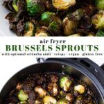 Air Fryer Brussels Sprouts – Nora Cooks