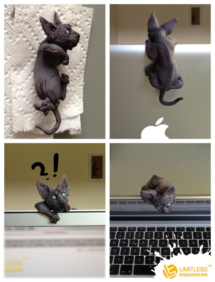 I need this for my computer! Sphynx Cat Camera Cover by LimitlessEndeavours on deviantART