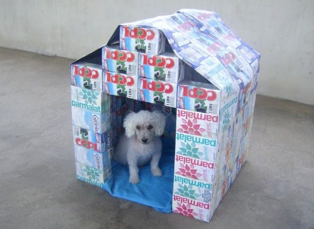 Casinha de Cachorro feita com caixinha de leite: Recycled Stuff, Dogs Happy, Pet Stuff, Boxes Dogs, Houses Inspiration, Dogs Houses Recycled, Boas Ideia, Doghous, Milk Boxes