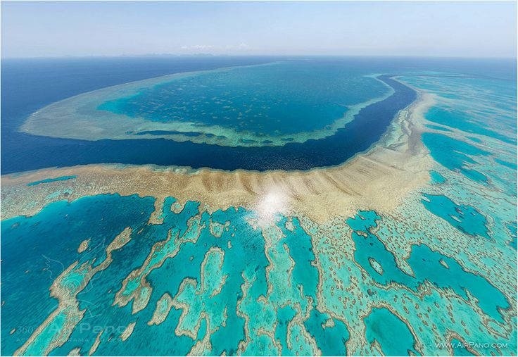 The Great Barrier Reef is the world's largest coral reef system composed of over 2,900 individual reefs and 900 islands stretching for over 1615 miles.