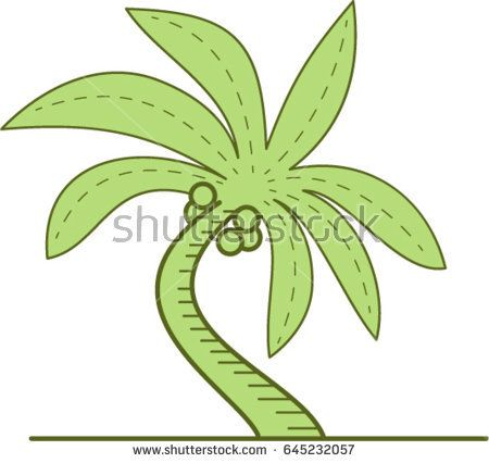 Mono line style illustration of a curved palm tree or Arecaceae, a flowering plants, a family in the monocot order Arecales set on isolated white background.   #palmtree #monoline #illustration