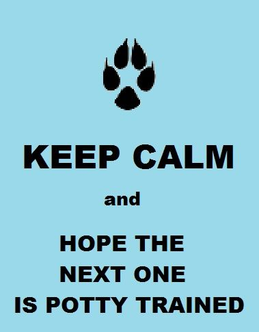 For dog foster parents.....