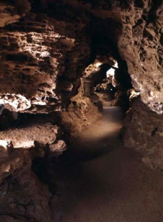Wind Cave National Park, located near Hot Springs, South Dakota, is one of the longest caves in the world, and the first cave to be designated a national park.