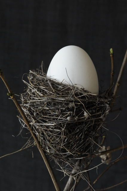 *Nesting Egg