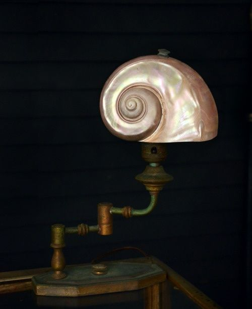 antique nautilus shell lamp - Google Search