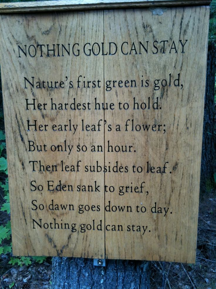 an interpretation of nothing gold can stay a poem by robert frost Robert frost's poem 'nothing gold can stay' becomes an allegory se hinton uses in the outsiders to highlight the loss of innocence within the greasers' lives, specifically those of the youngest.