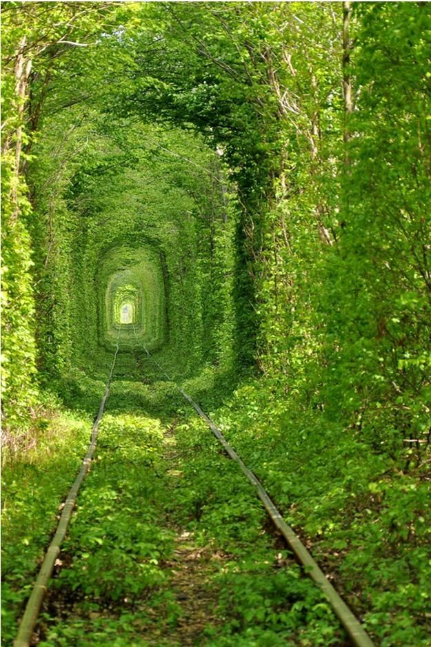 The Tunnel of Love in Klevan, Ukraine: Favorite Places, Ukraine, Nature, Green, Beautiful, Travel, Tree Tunnel, Trains