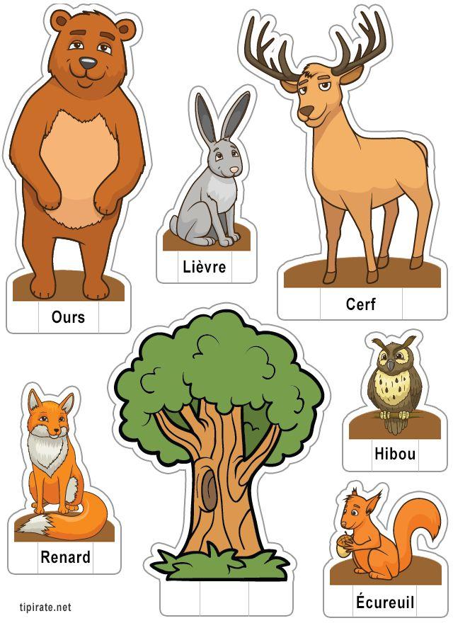 Apprendre les noms des animaux de la forêt,  le lièvre, l'ours, le hibou, le renard, l'écureuil et le cerf