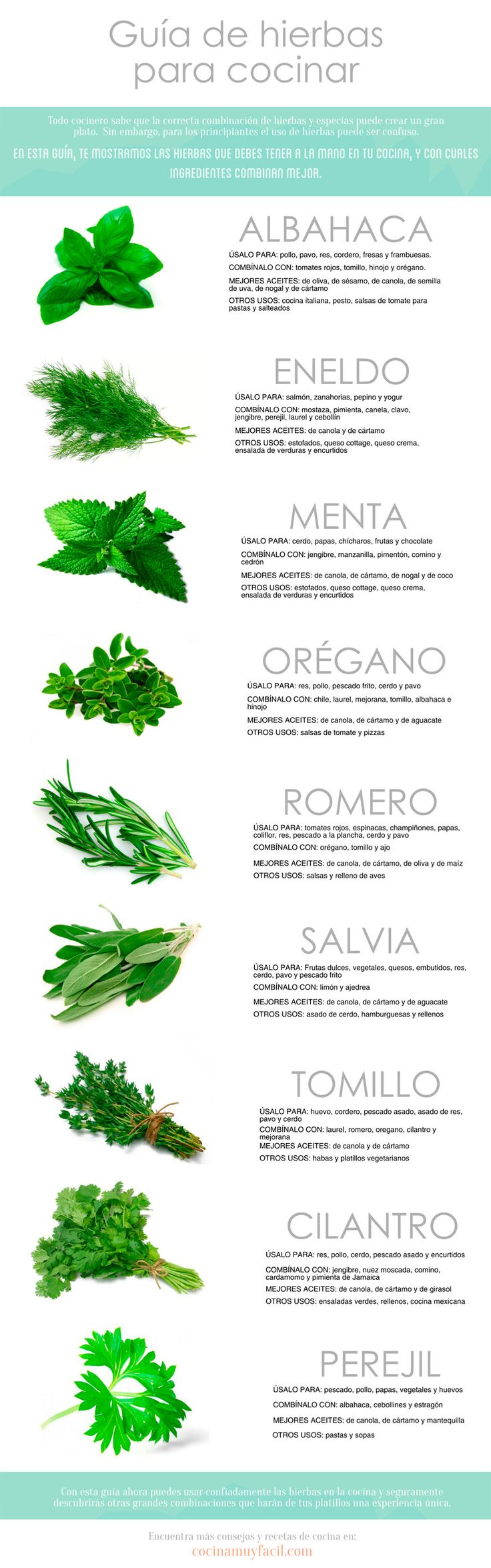 Guía de hierbas para cocinar. #Infografia