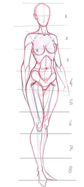 Today's Drawing Class: Drawing the Female Body |  Female proportions:
