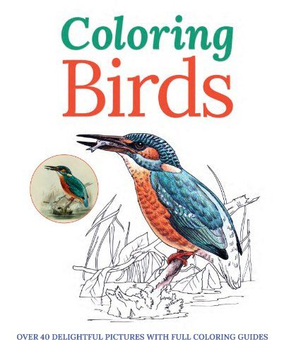 Coloring Birds Adult Book Over 40 Delightful Pictures With Full Guides