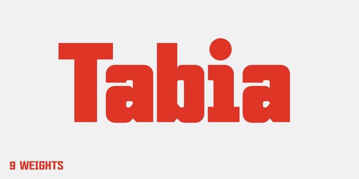 Tabia™ - Webfont & Desktop font « MyFonts