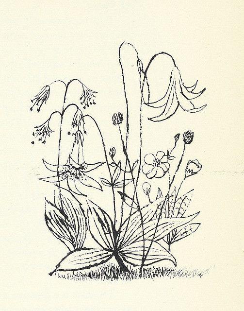 """""""Flowers"""" by Ben Shahn"""