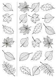 Výsledok vyhľadávania obrázkov pre dopyt grafismos de outono