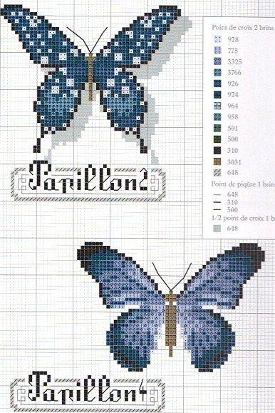 .papillons bleus