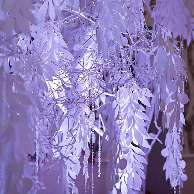 Студия декора Весна.✨❄#свадебныйдекор✨❄ #фото : @denisvlasoff . #аплайтинг: @kirillgolovko .  #декор : @decor.vesna . #justmarried  #ceremony #wedding #weddingday #weddingdecor #weddingrussia #weddinginspiration  #mywed #marriage #аплайтинг #декорвесна   #ceremony #weddingideas #decor #decoration #design #свадьбазимой #зимняясвадьба #winterwedding #winterdecor #wedding73
