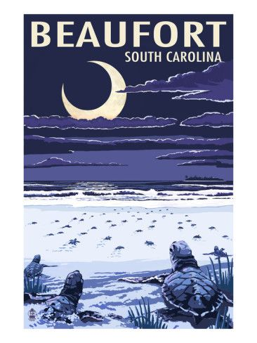 Beaufort, South Carolina - Sea Turtles Hatching Art Print