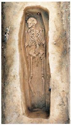 Jamestown Settler S Skeleton Virginia Colony Early
