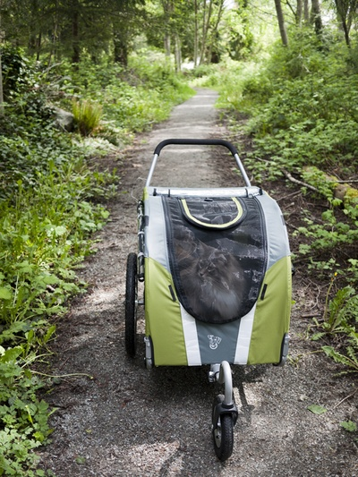 Here's a DoggyRide stroller being enjoyed by a cute kitty