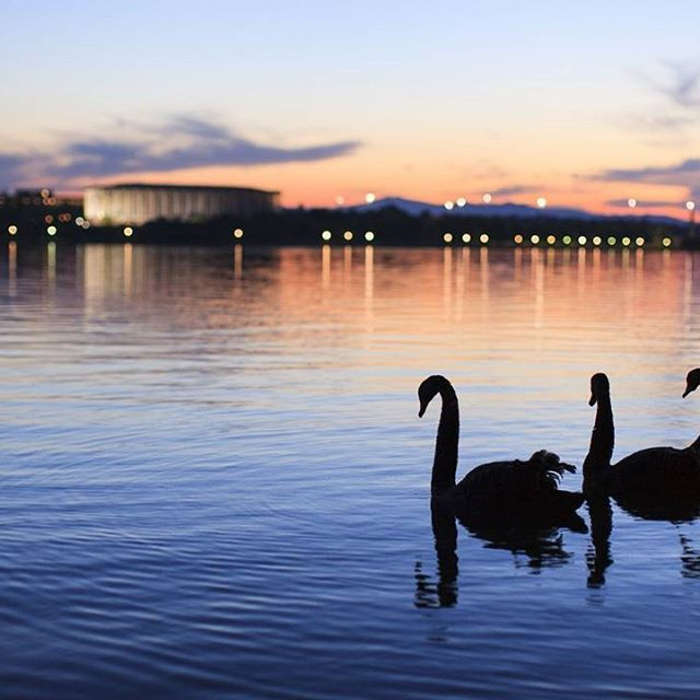 MUST DO EXPERIENCE 10: At the heart of Canberra is Lake Burley Griffin…