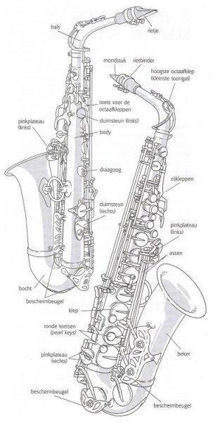 saxofoons alles wat je erover wilt weten!