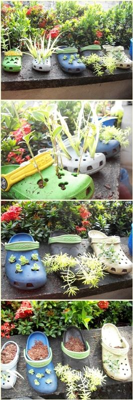old and worn-out Crocs repurposed as planters