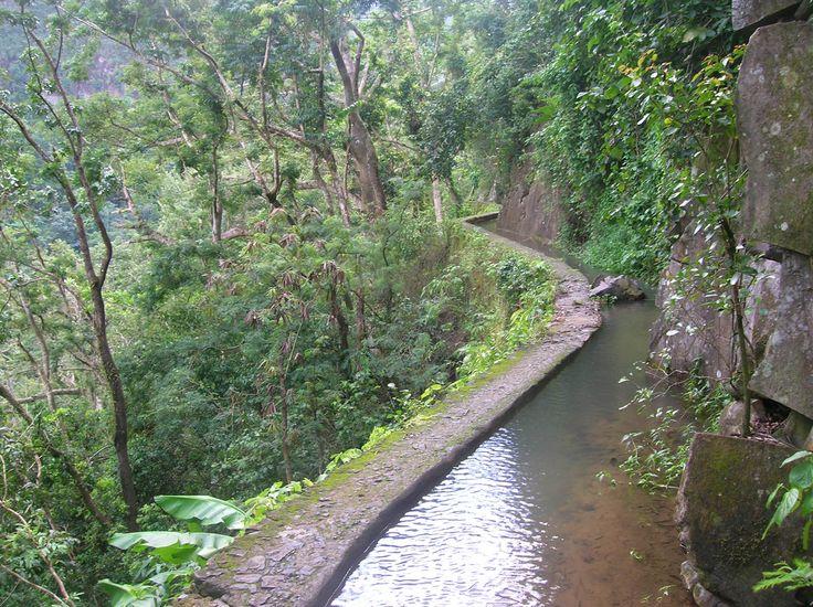 11 Novembre : 5 idées sorties à (re)tester en Martinique