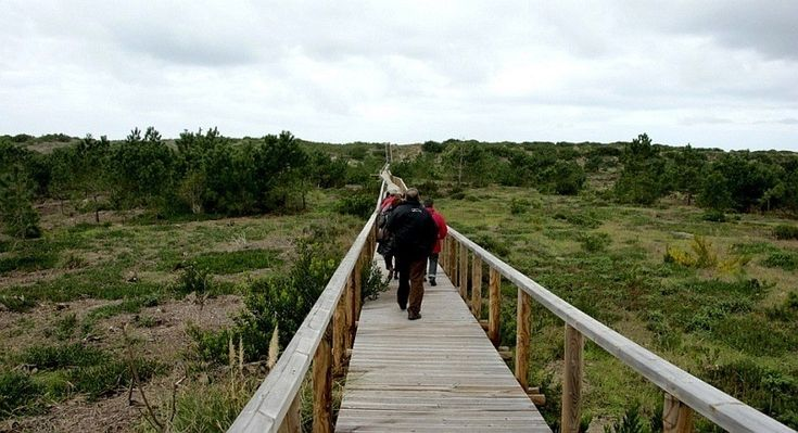 When visiting Aveiro, take some time to admire the Natural Reserve of Dunas de São Jacinto.