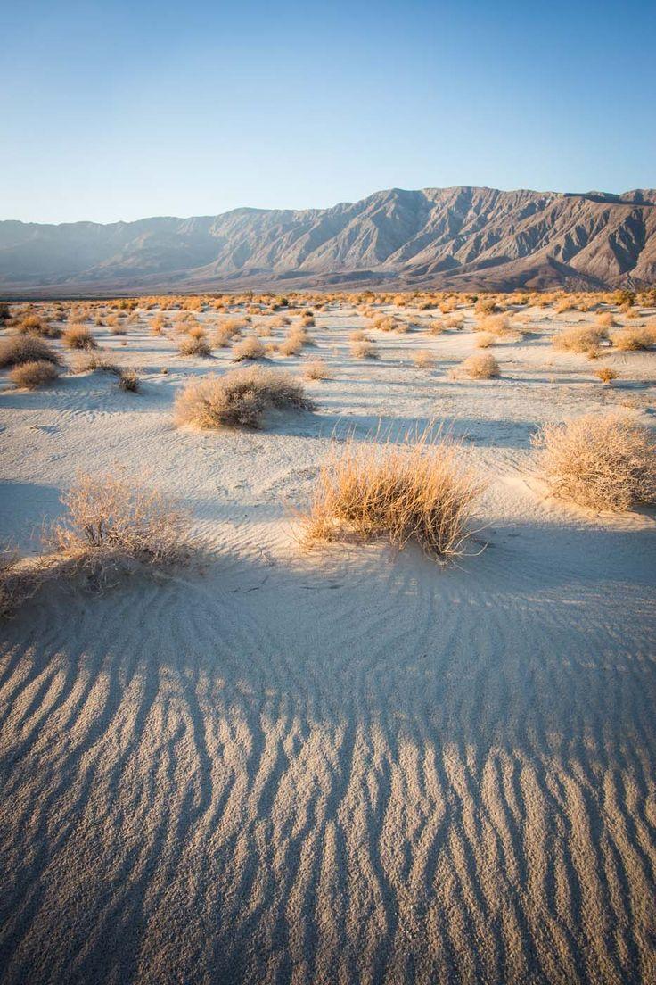 Anza-Borrego Desert State Park, Colorado Desert, California