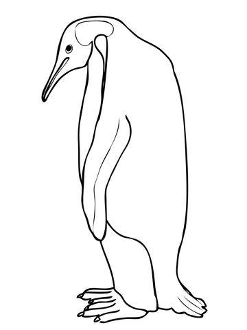 Pingüino emperador Dibujo para colorear | Polo sur | Dibujos para ...